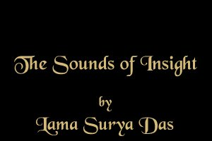 The Sounds of Insight